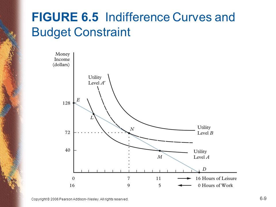 FIGURE 6.5 Indifference Curves and Budget Constraint