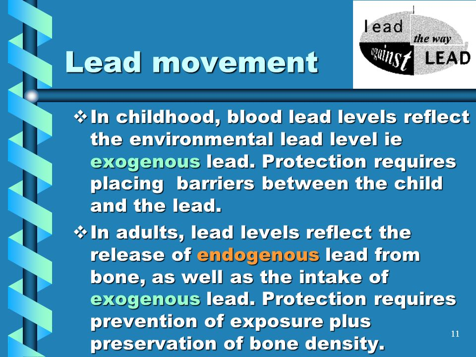 lead levels adult