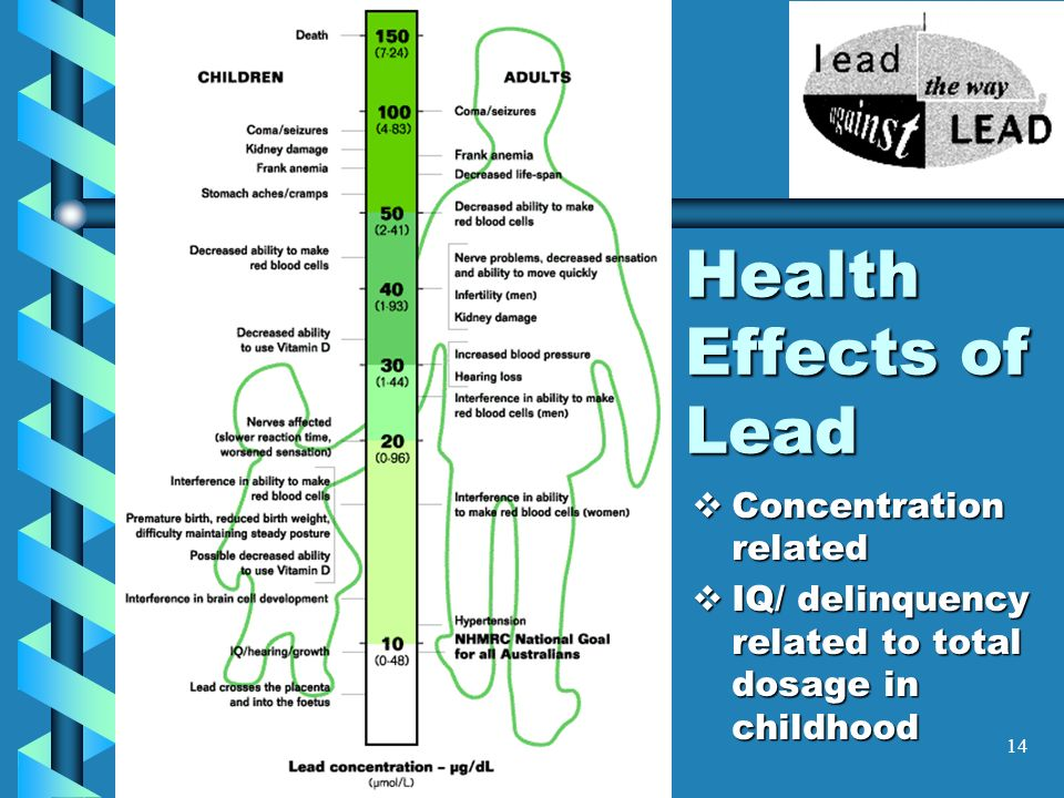 Health Effects of Lead Concentration related