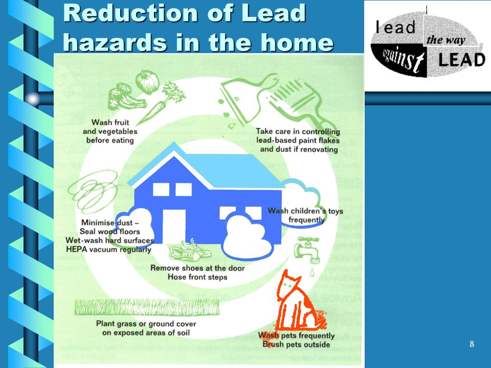 Reduction of Lead hazards in the home