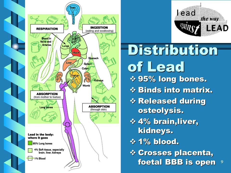 Distribution of Lead 95% long bones. Binds into matrix.