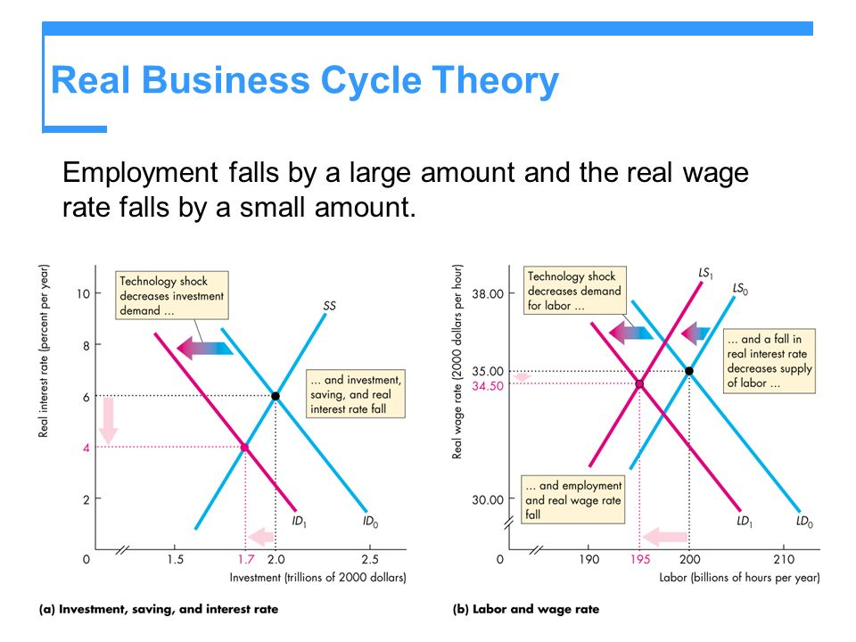 Real Business Cycle Theory
