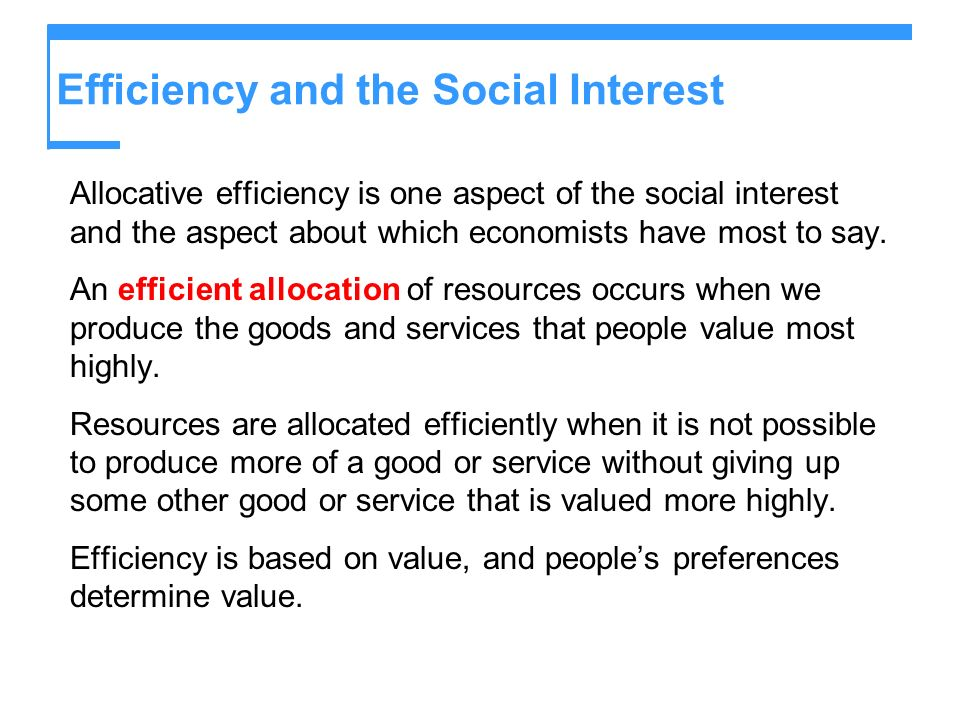 Efficiency and the Social Interest