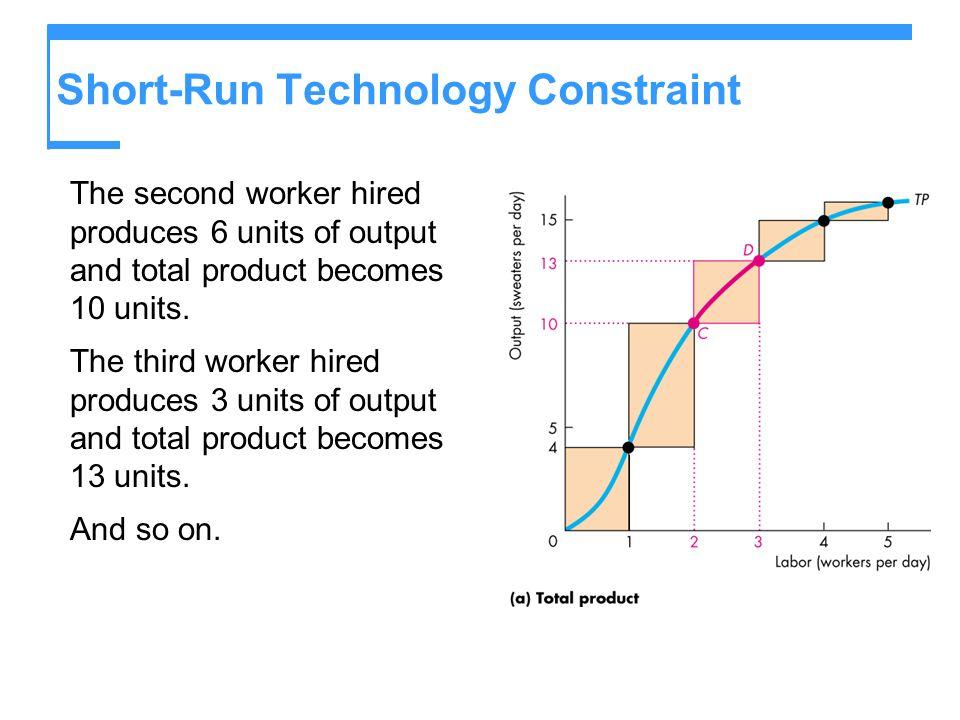 Short-Run Technology Constraint