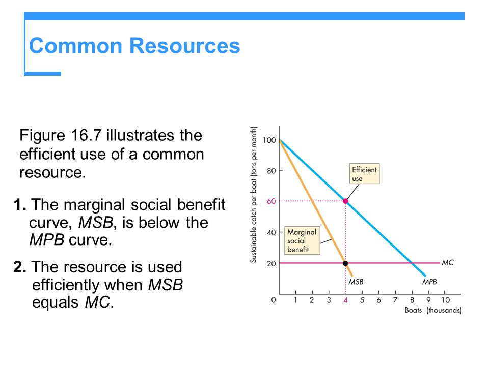 Common Resources Figure 16.7 illustrates the efficient use of a common resource. 1. The marginal social benefit curve, MSB, is below the MPB curve.