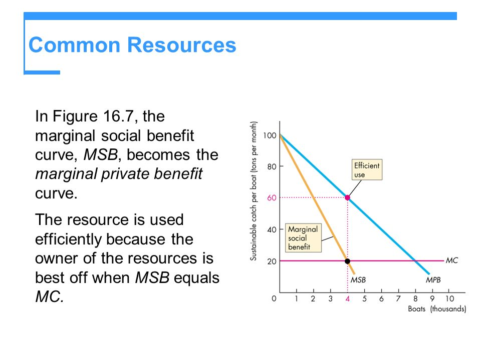 Common Resources In Figure 16.7, the marginal social benefit curve, MSB, becomes the marginal private benefit curve.