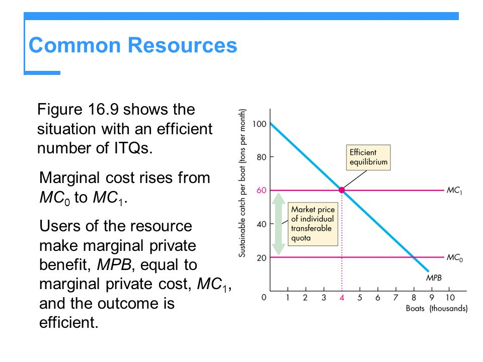 Common Resources Figure 16.9 shows the situation with an efficient number of ITQs. Marginal cost rises from MC0 to MC1.