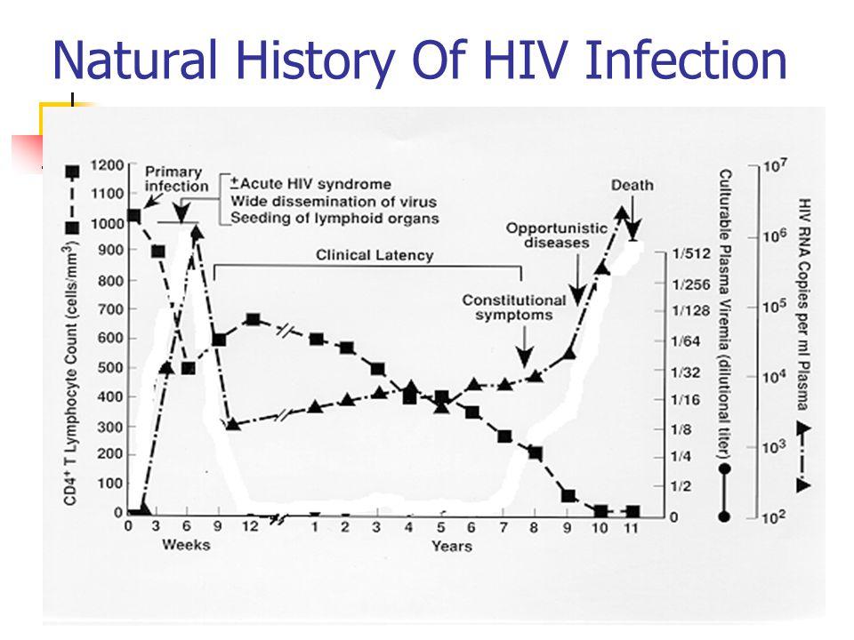 Hiv Viral Load Natural History