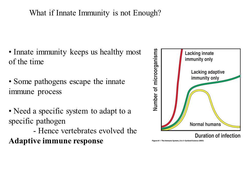 What if Innate Immunity is not Enough