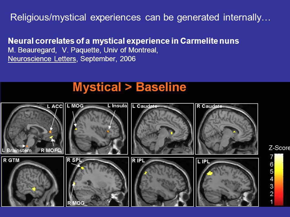 neural correlates of religious experience The neural correlates of a religious experience are investigated using from mcb 170 at university of illinois, urbana champaign.