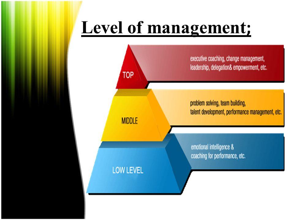 Level of management;