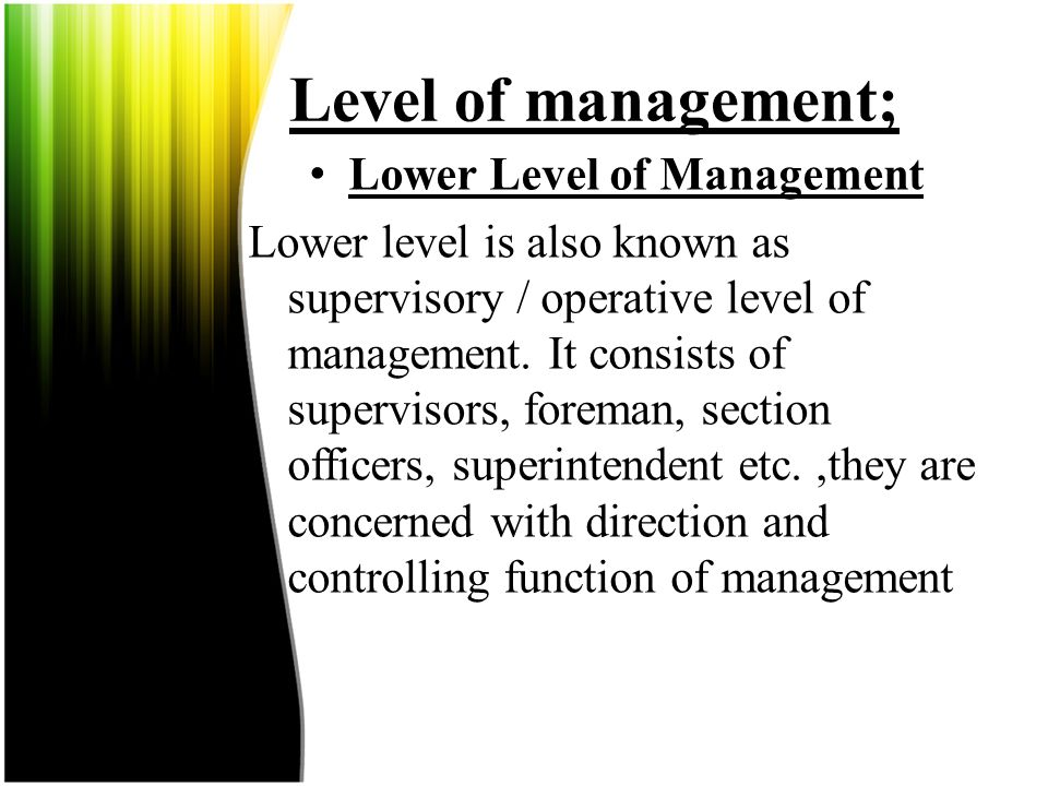Lower Level of Management