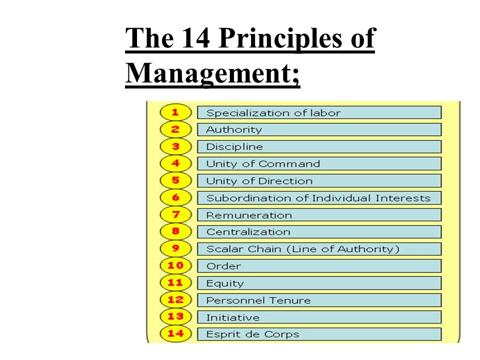 The 14 Principles of Management;