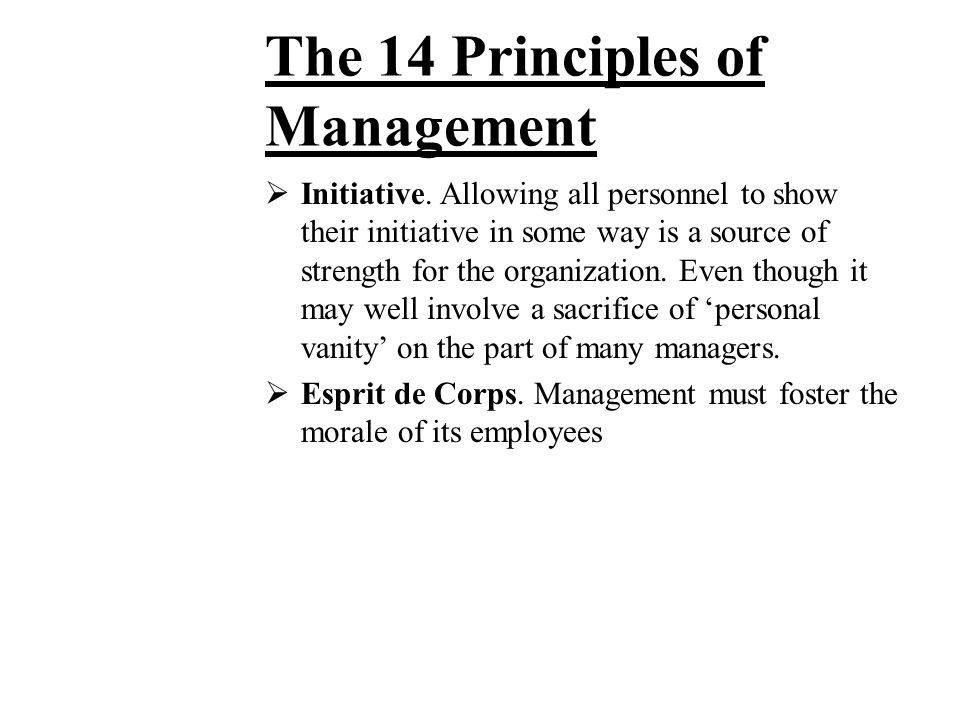 The 14 Principles of Management
