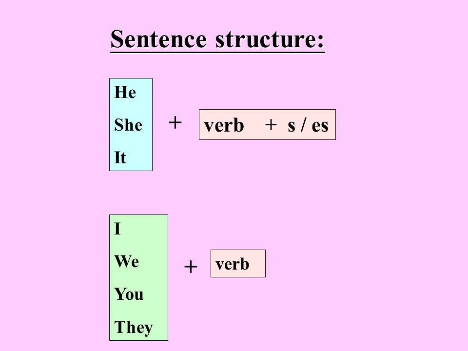 Sentence structure: He She It + verb + s / es I We You They + verb
