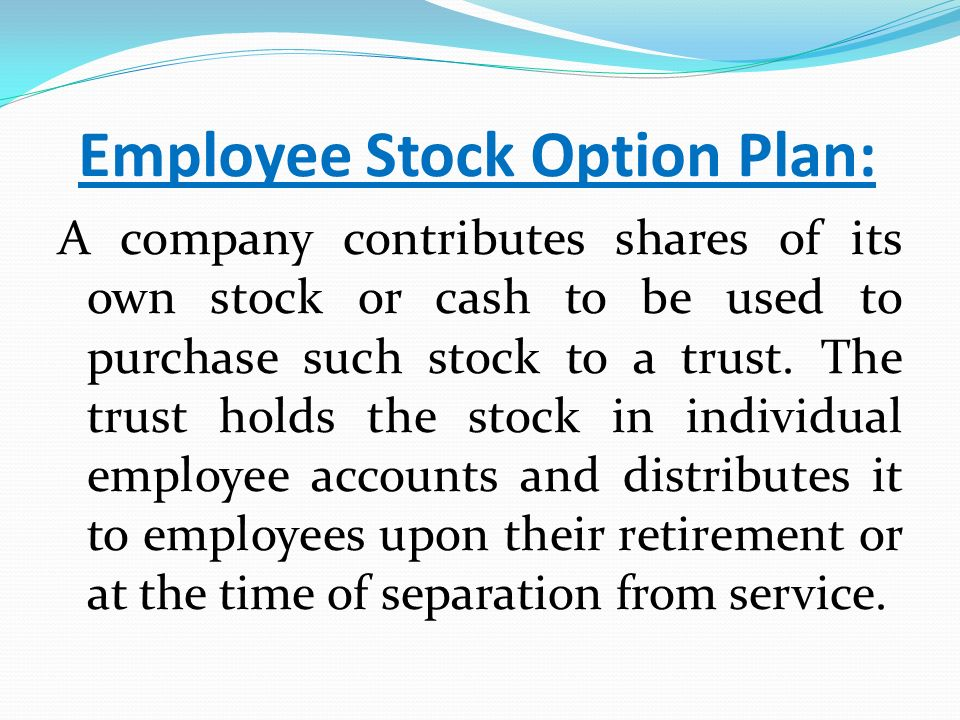 Stock purchase rights options
