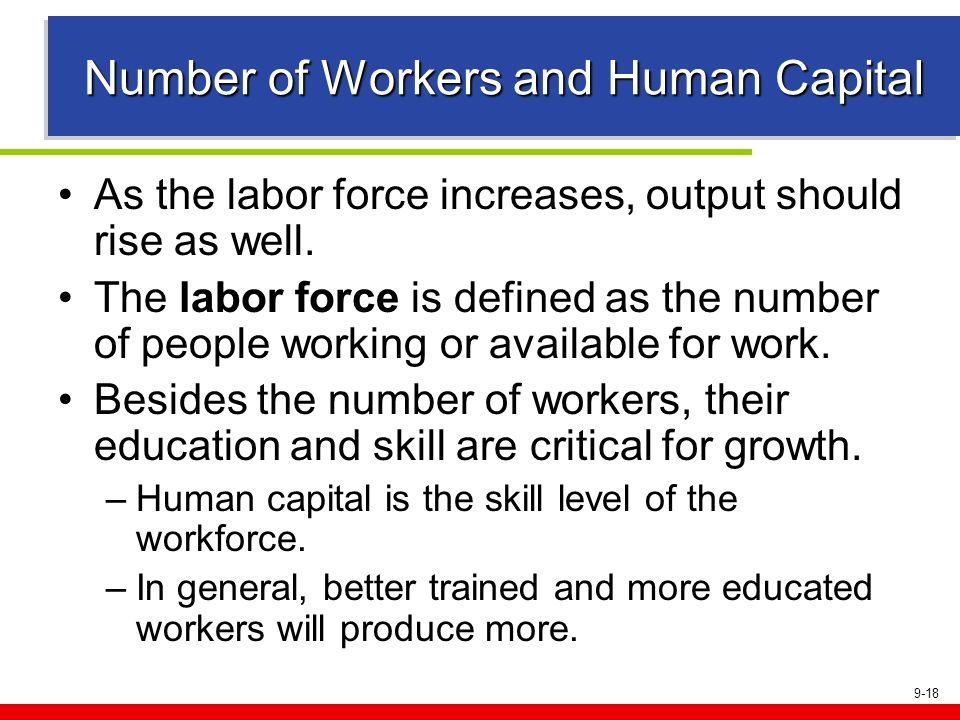Number of Workers and Human Capital