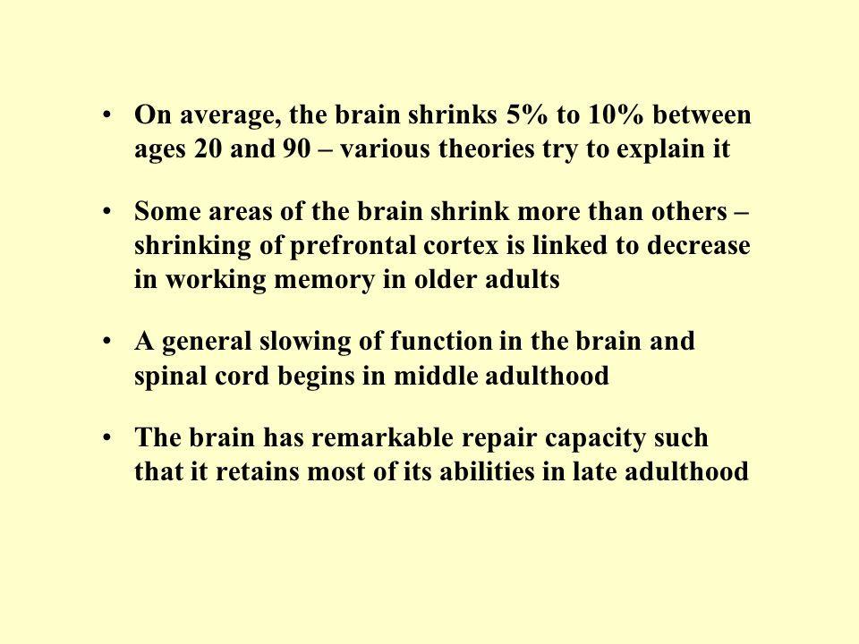 On average, the brain shrinks 5% to 10% between ages 20 and 90 – various theories try to explain it