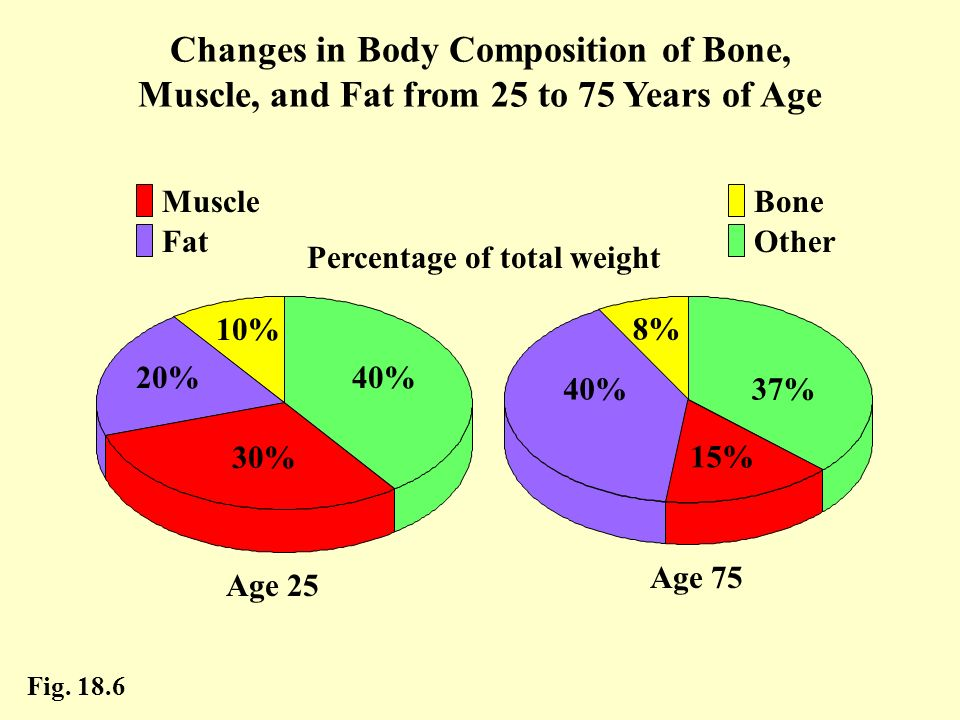 Percentage of total weight