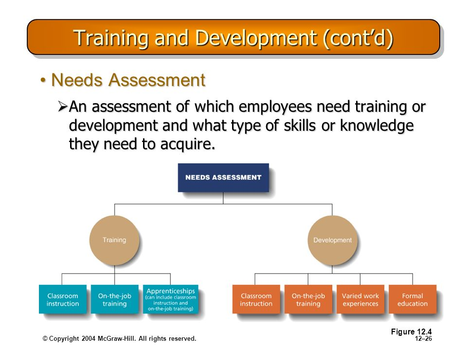 Training and Development (cont'd)