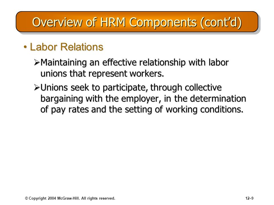 Overview of HRM Components (cont'd)
