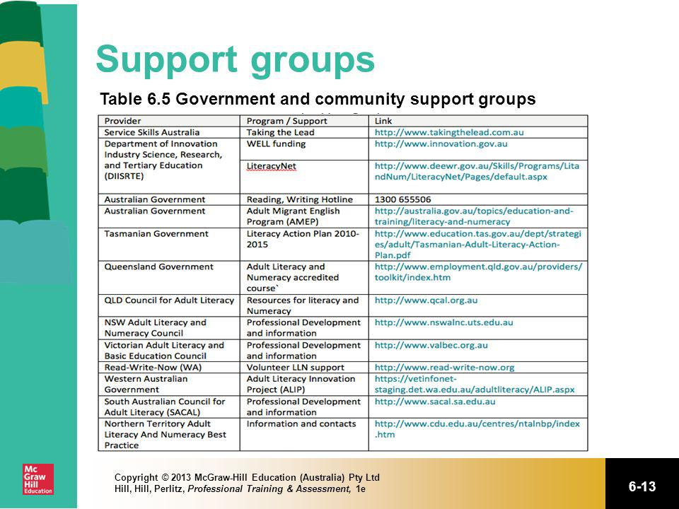Support groups Table 6.5 Government and community support groups