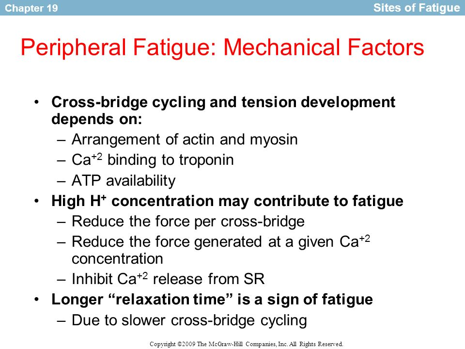 Peripheral Fatigue: Mechanical Factors