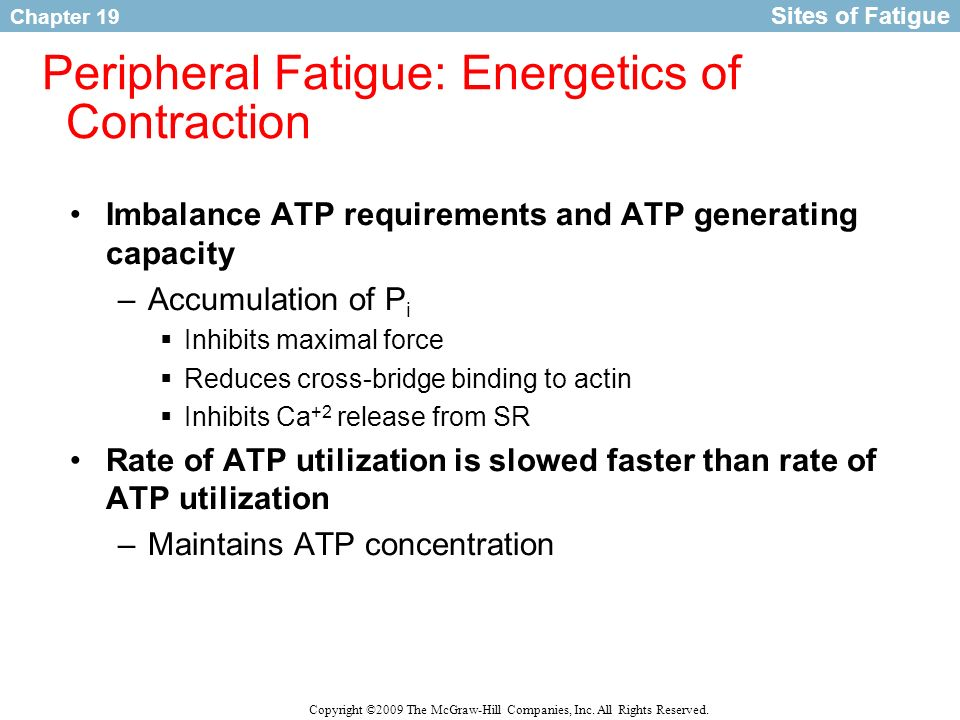Peripheral Fatigue: Energetics of Contraction