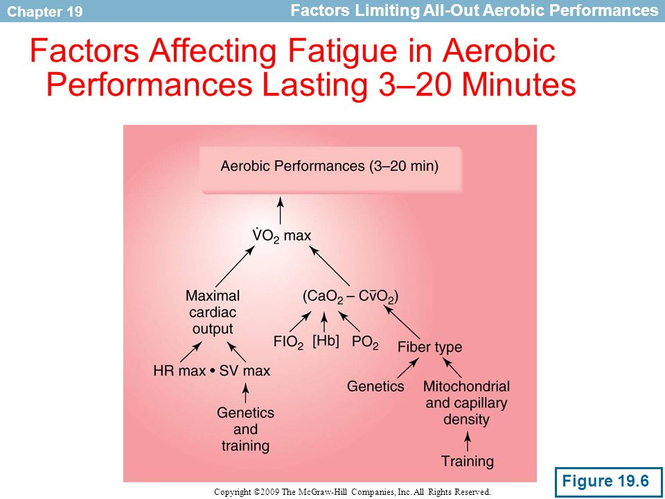Factors Affecting Fatigue in Aerobic Performances Lasting 3–20 Minutes