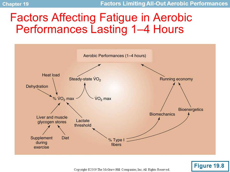 Factors Affecting Fatigue in Aerobic Performances Lasting 1–4 Hours