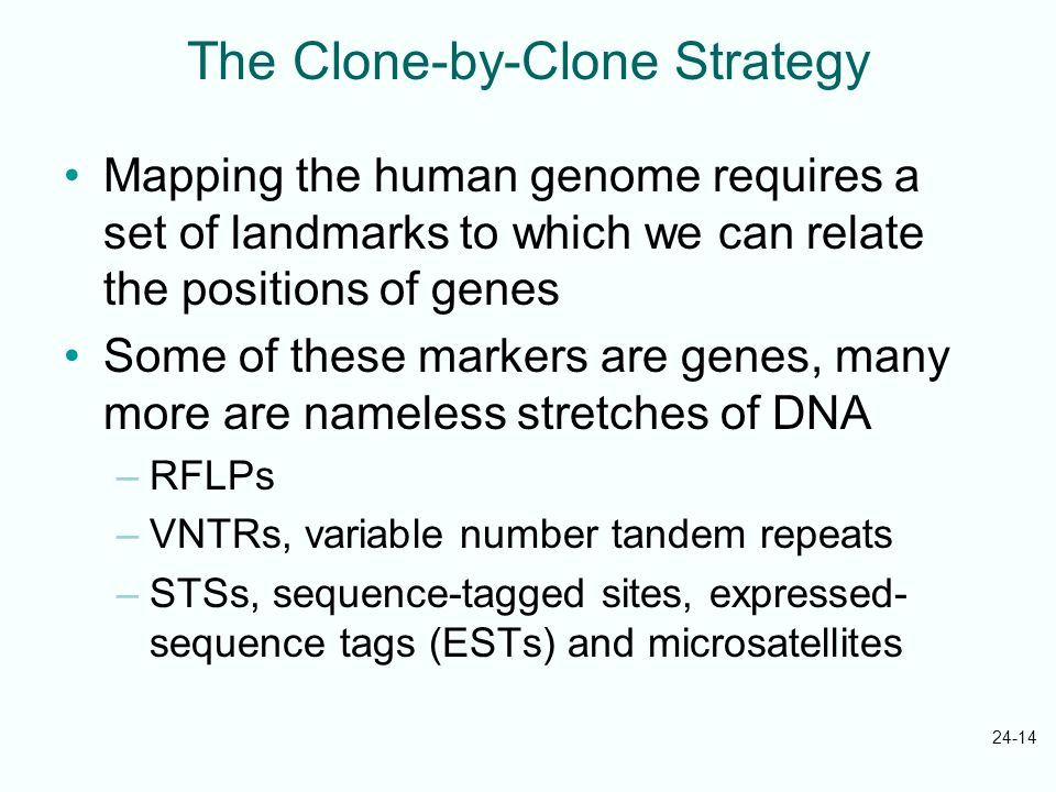 The Clone-by-Clone Strategy