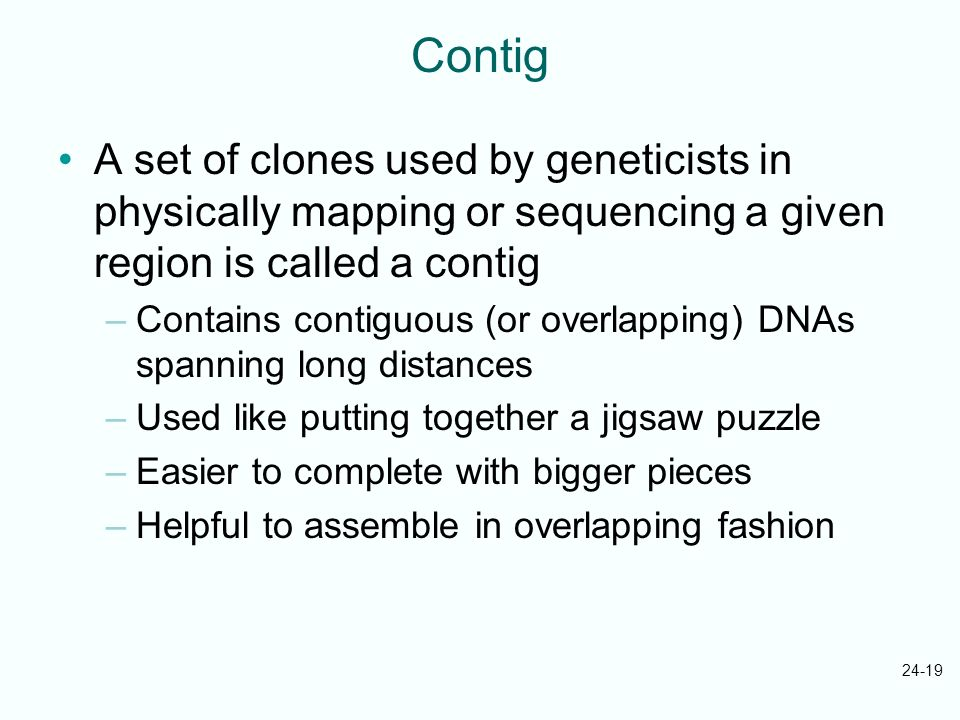 Contig A set of clones used by geneticists in physically mapping or sequencing a given region is called a contig.