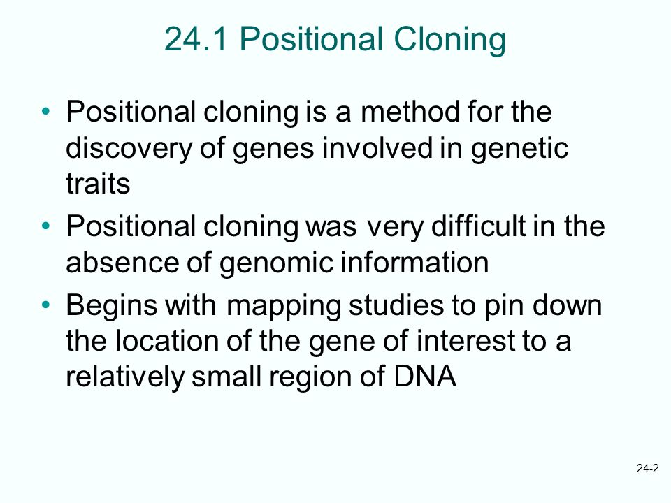 24.1 Positional Cloning Positional cloning is a method for the discovery of genes involved in genetic traits.