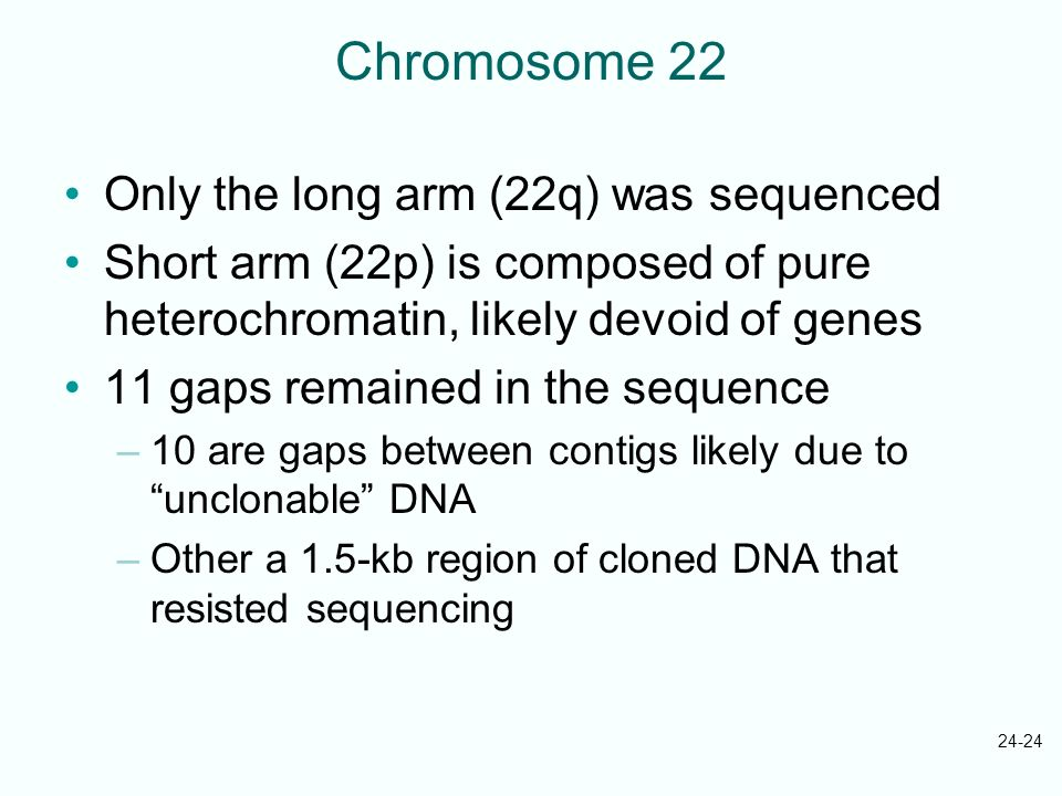 Chromosome 22 Only the long arm (22q) was sequenced