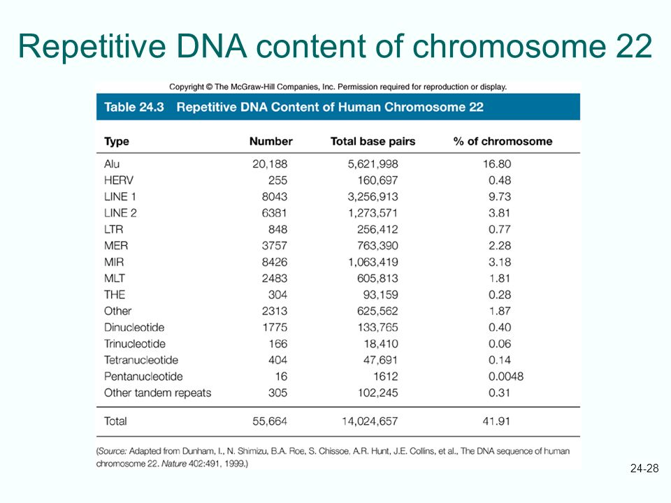 Repetitive DNA content of chromosome 22