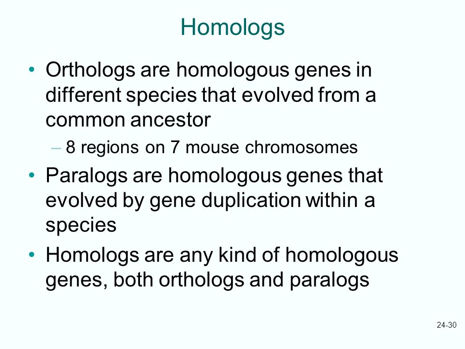 Homologs Orthologs are homologous genes in different species that evolved from a common ancestor. 8 regions on 7 mouse chromosomes.