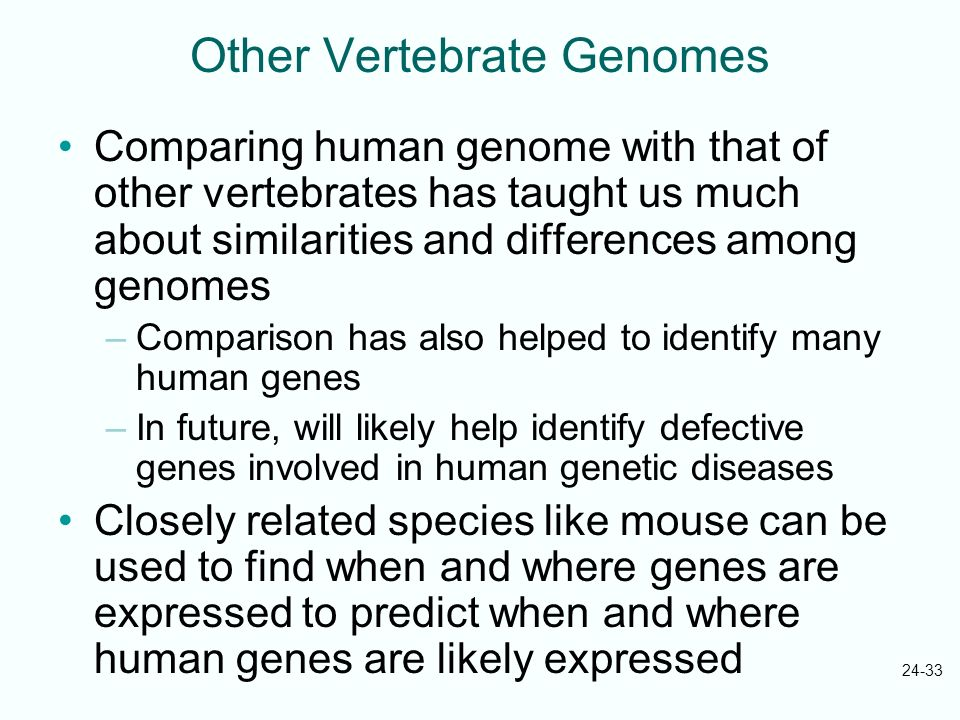 Other Vertebrate Genomes