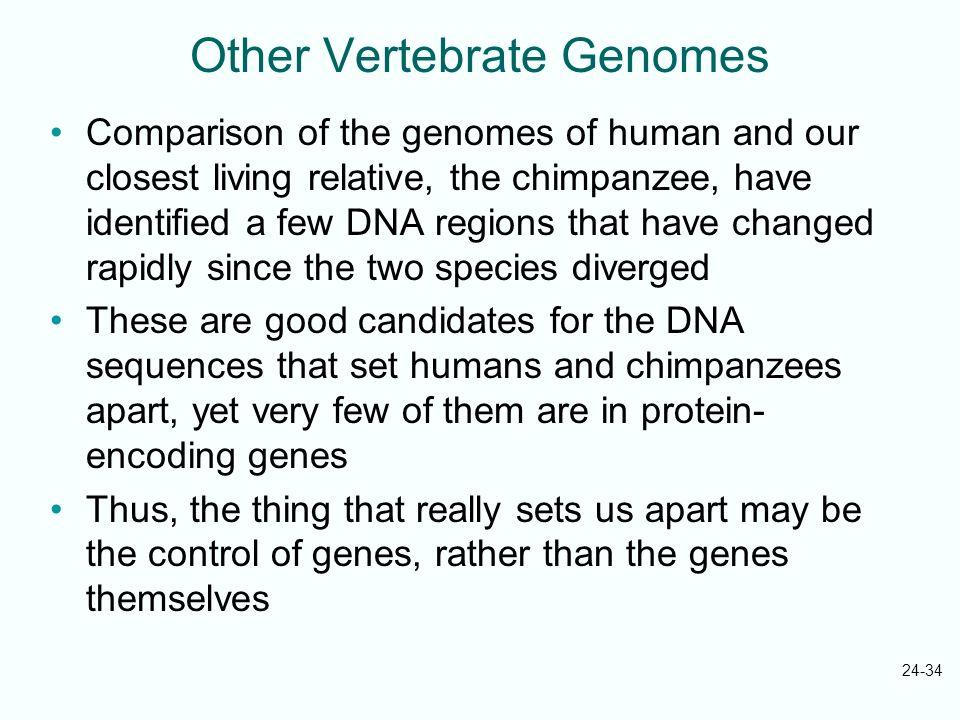 Other Vertebrate Genomes