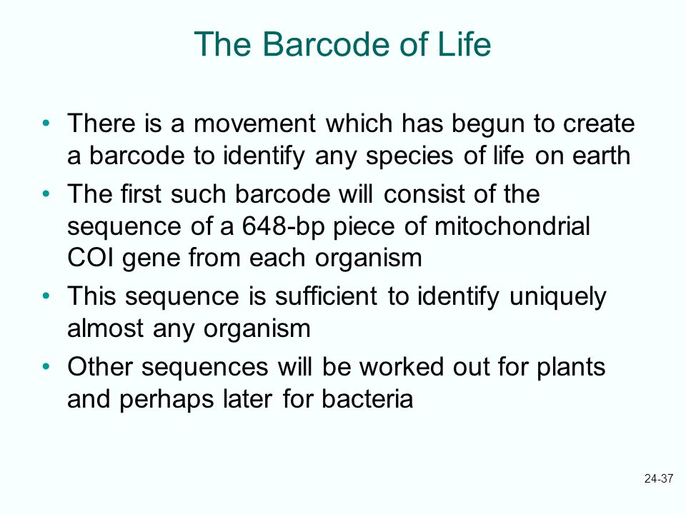 The Barcode of Life There is a movement which has begun to create a barcode to identify any species of life on earth.