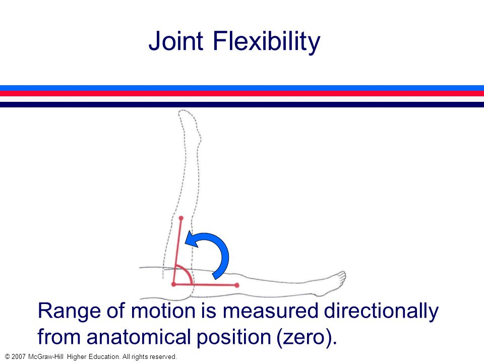 Joint Flexibility Range of motion is measured directionally from anatomical position (zero).