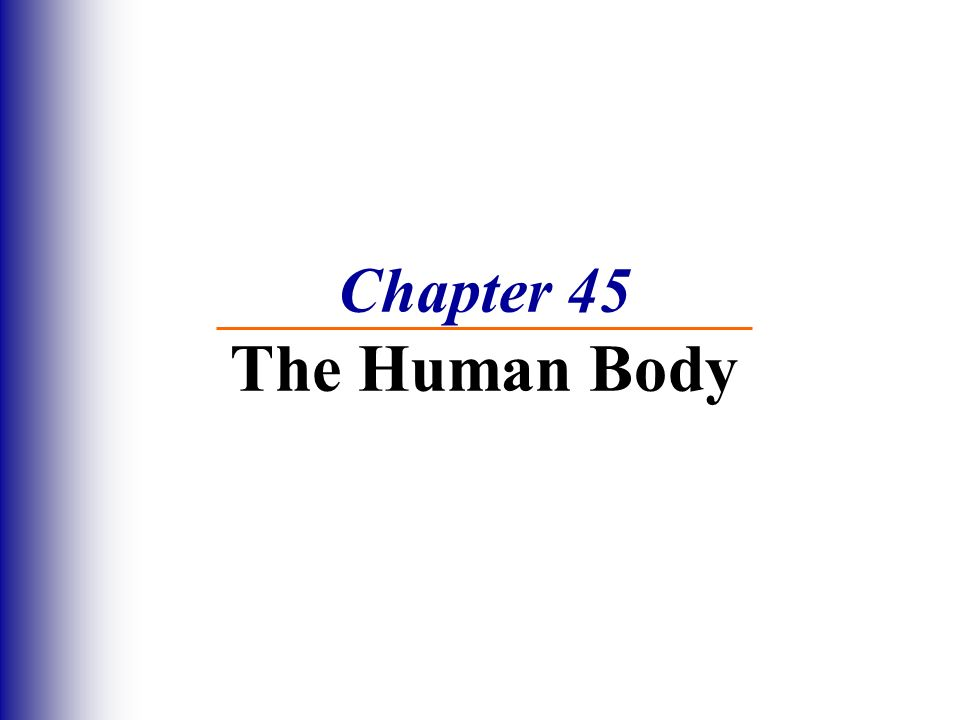 Chapter 45 The Human Body