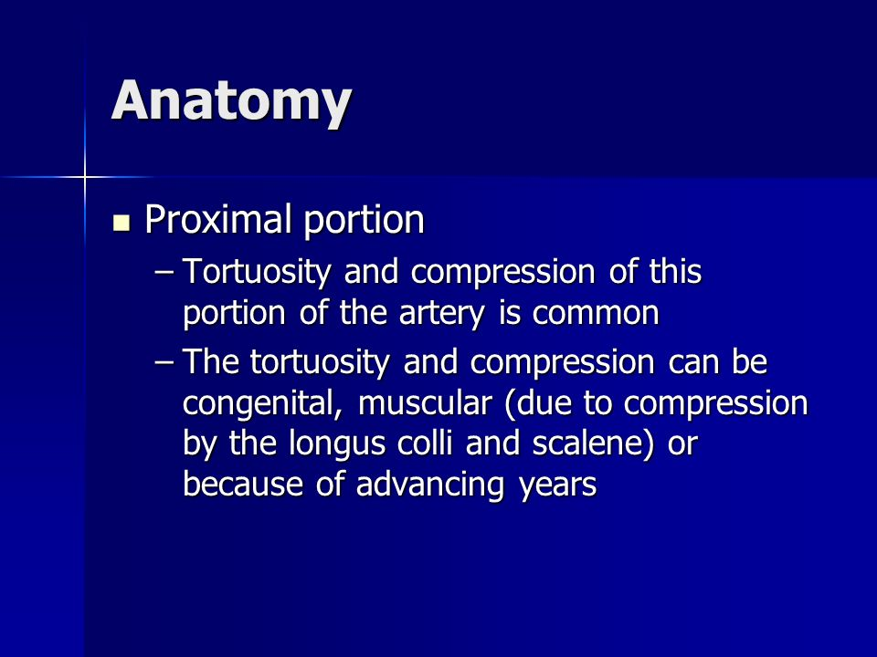 Anatomy Proximal portion