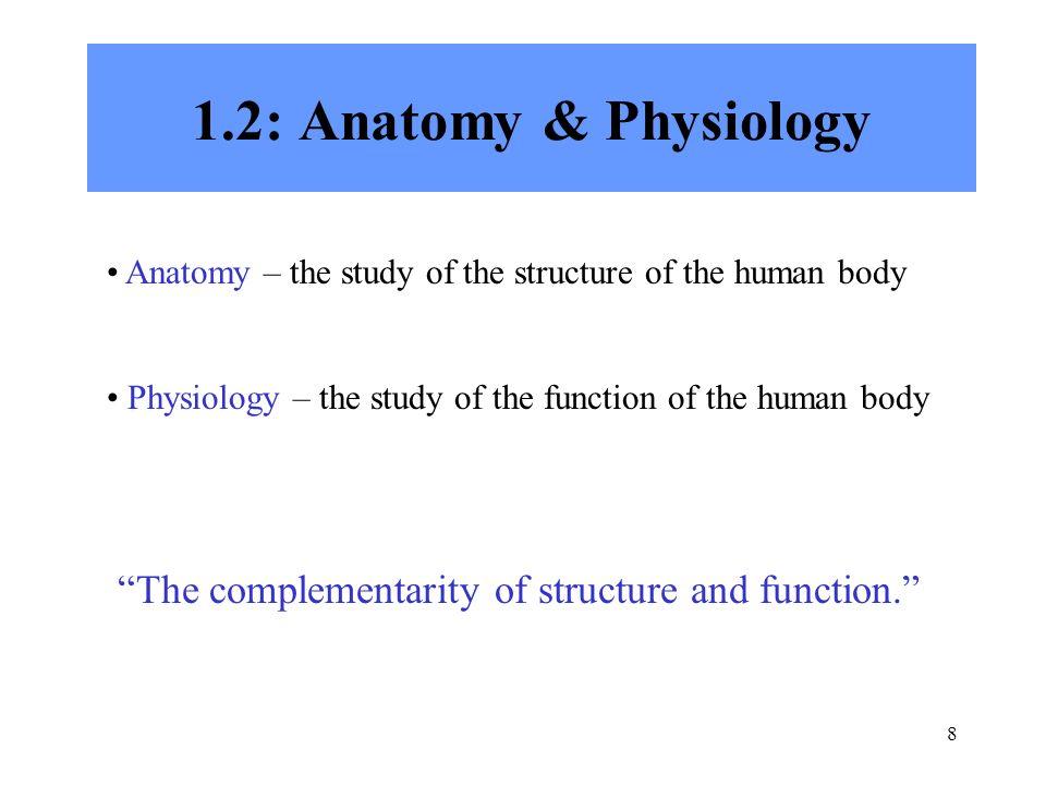 Nett Anatomy And Physiology Chapter 1 Fotos - Anatomie und ...