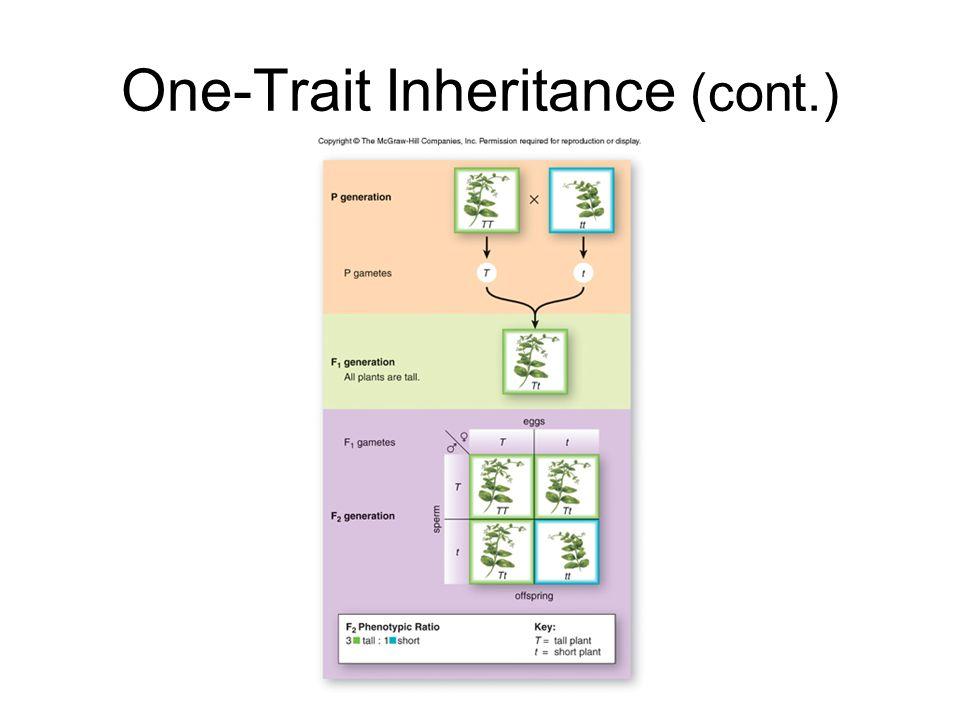 One-Trait Inheritance (cont.)