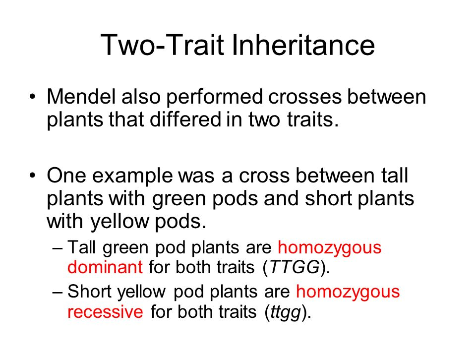 Two-Trait Inheritance