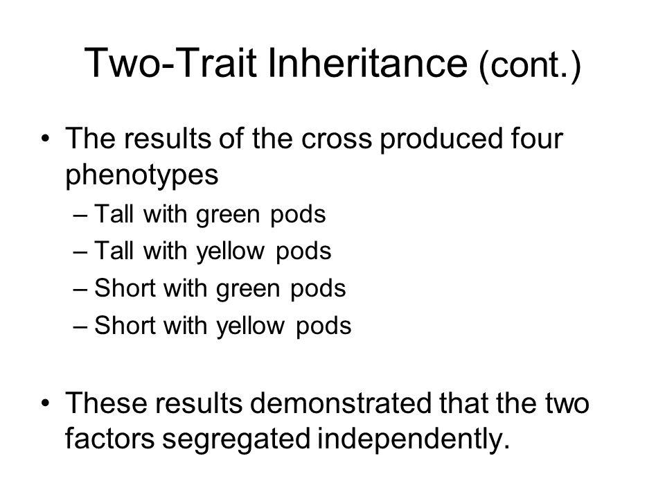 Two-Trait Inheritance (cont.)