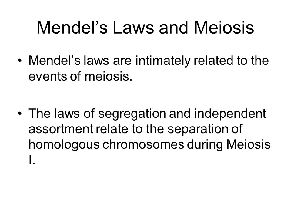 Mendel's Laws and Meiosis