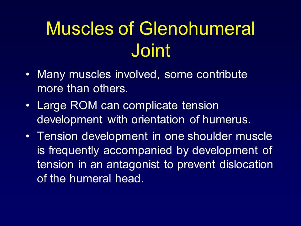 Muscles of Glenohumeral Joint