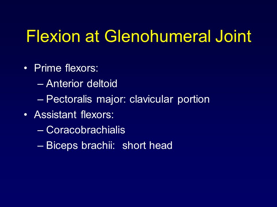 Flexion at Glenohumeral Joint