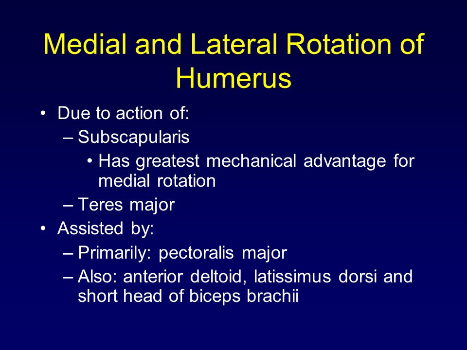 Medial and Lateral Rotation of Humerus